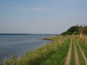 Cycle path towards Horsens along the Horsens Fjord