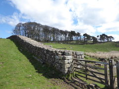 4 hadrians wall housesteads