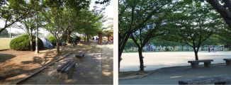 Osaka. In nearly every park there was gym in the morning, especially for the elderly